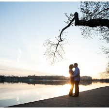 Washington DC engagement session cherry blossoms tidal basin