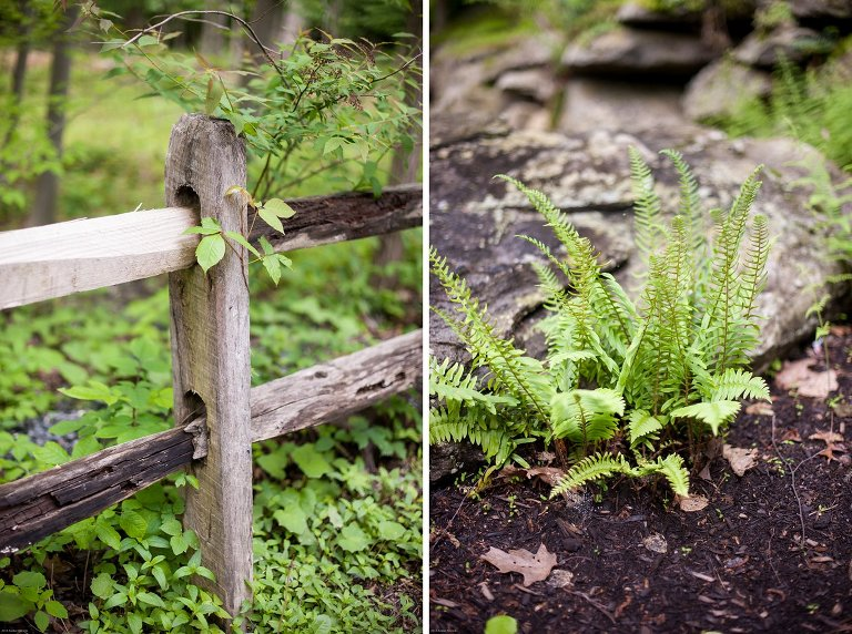 wooden fence and ferns Thorpewood Mountain Memories wedding Thurmont, MD